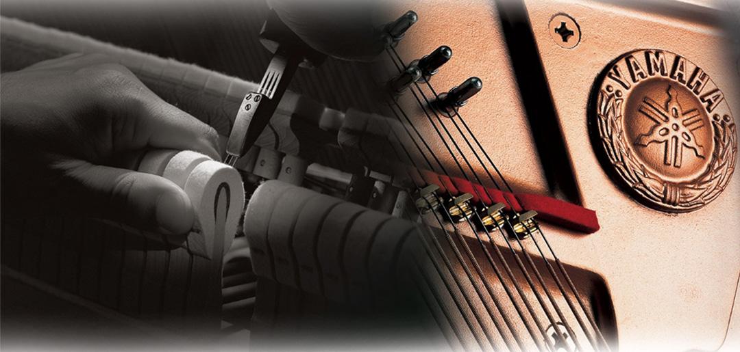 Musical Leonés. Especialistas afinación y restauración